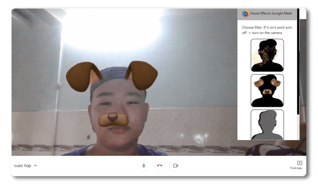 Visual Effects for Google Meet Filters
